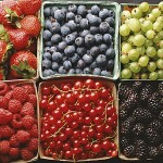 FruitBoxes