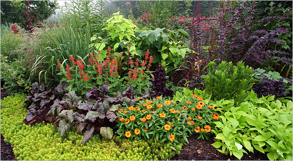 How Green is Your Garden? Follow These Tips and Put Some Green in Your Wallet