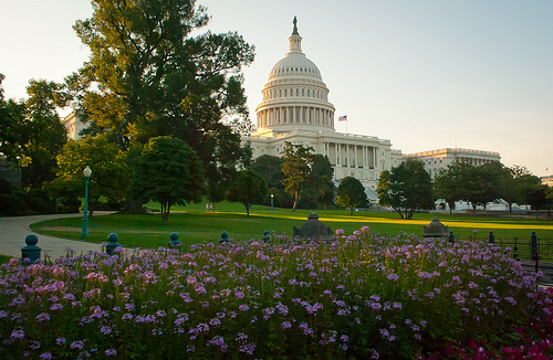 Family Vacation to Washington D.C- Must See Landmarks