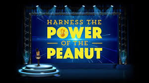 Power of the Peanut: Nature's Tiny Miracle
