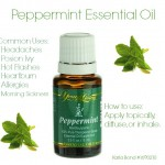 peppermint1