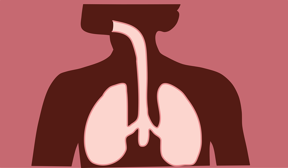 Tips for Better Respiratory Health